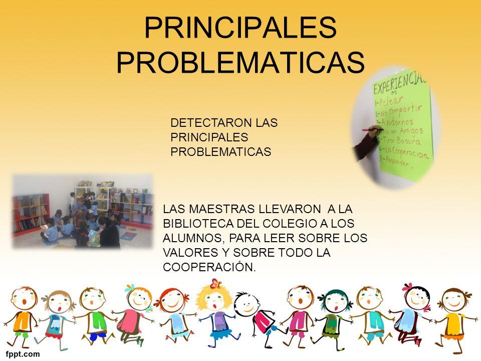 PRINCIPALES PROBLEMATICAS