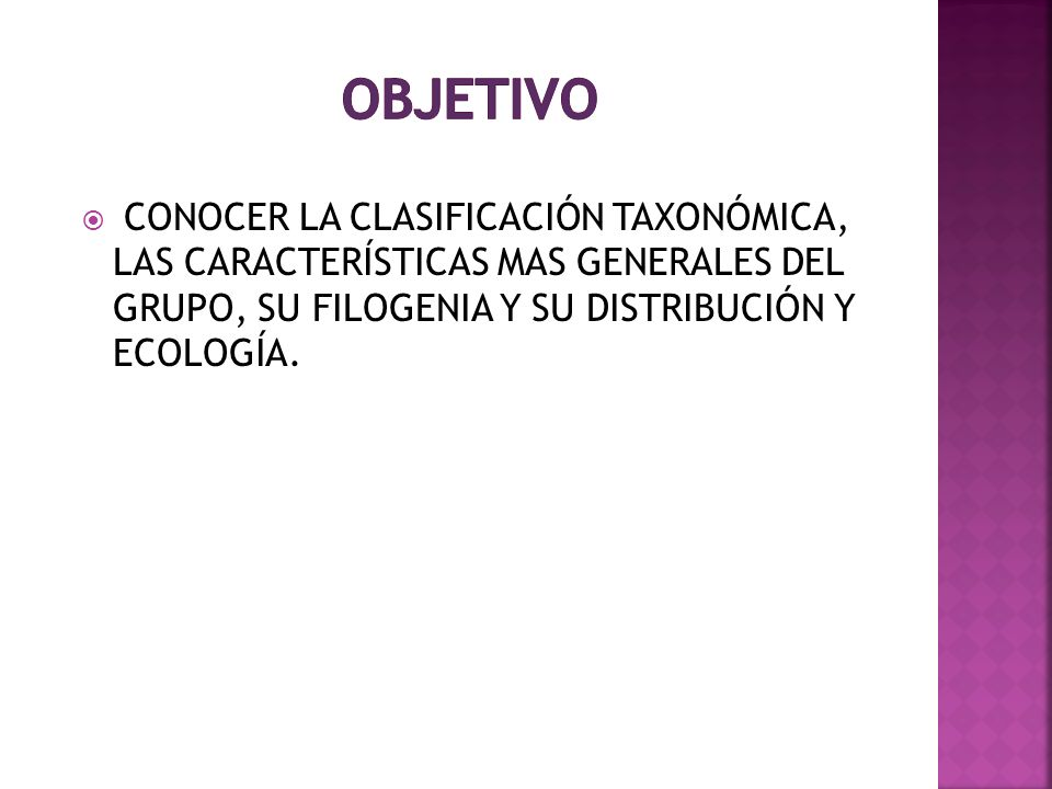 OBJETIVO CONOCER LA CLASIFICACIÓN TAXONÓMICA, LAS CARACTERÍSTICAS MAS GENERALES DEL GRUPO, SU FILOGENIA Y SU DISTRIBUCIÓN Y ECOLOGÍA.