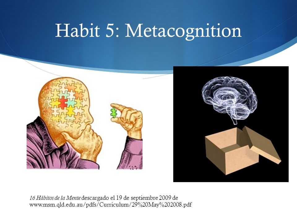 Habit 5: Metacognition 16 Hábitos de la Mente descargado el 19 de septiembre 2009 de www.msm.qld.edu.au/pdfs/Curriculum/29%20May%202008.pdf.