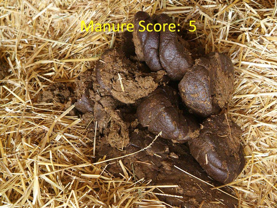 Manure Score: 5