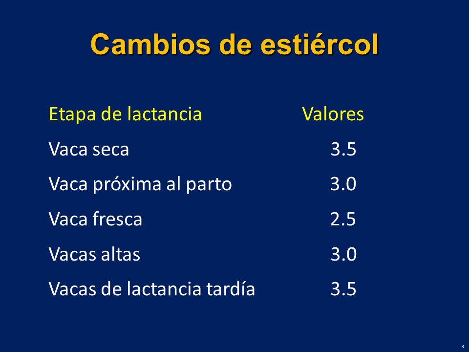 Cambios de estiércol Etapa de lactancia Valores Vaca seca 3.5