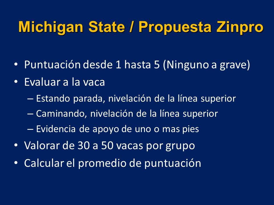 Michigan State / Propuesta Zinpro