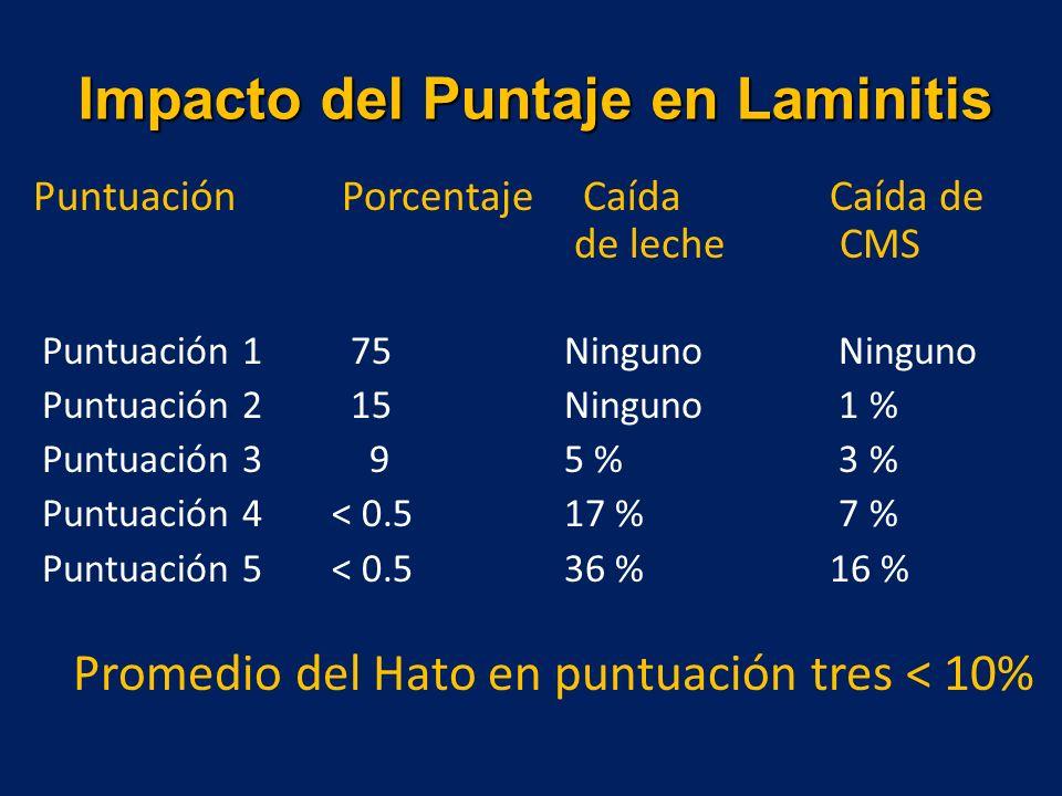 Impacto del Puntaje en Laminitis