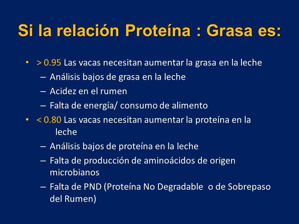Si la relación Proteína : Grasa es: