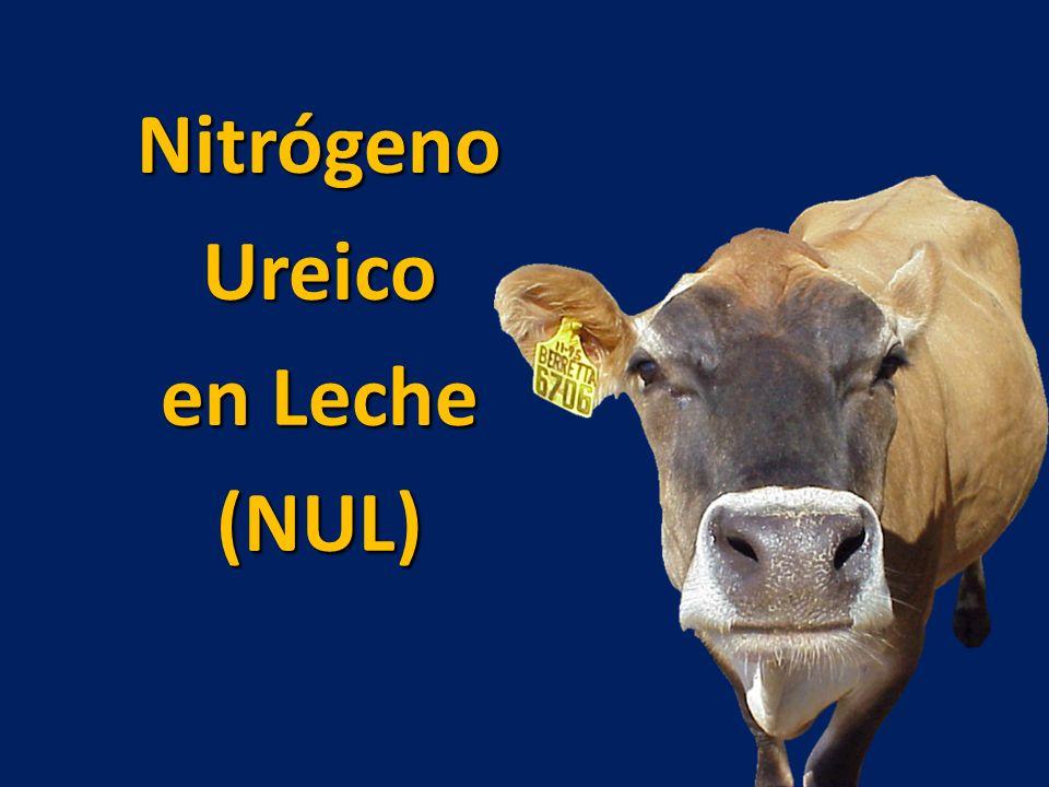 Nitrógeno Ureico en Leche (NUL)