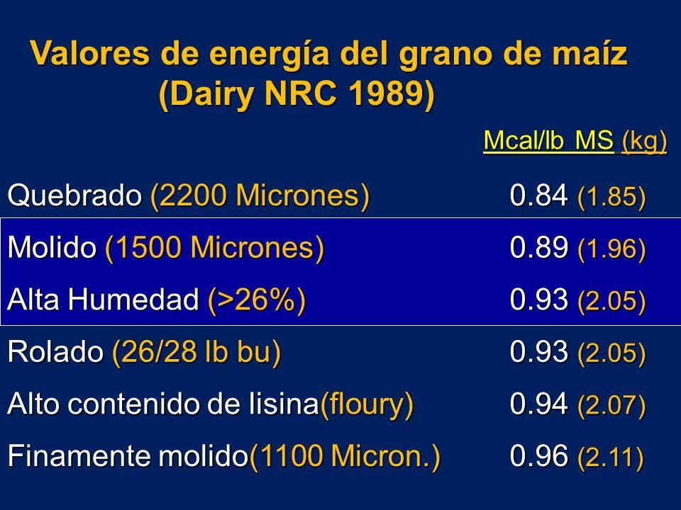 Valores de energía del grano de maíz (Dairy NRC 1989)