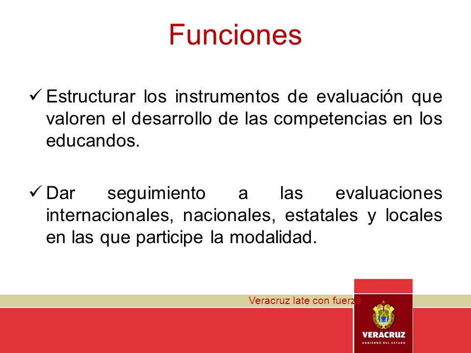 Funciones Estructurar los instrumentos de evaluación que valoren el desarrollo de las competencias en los educandos.