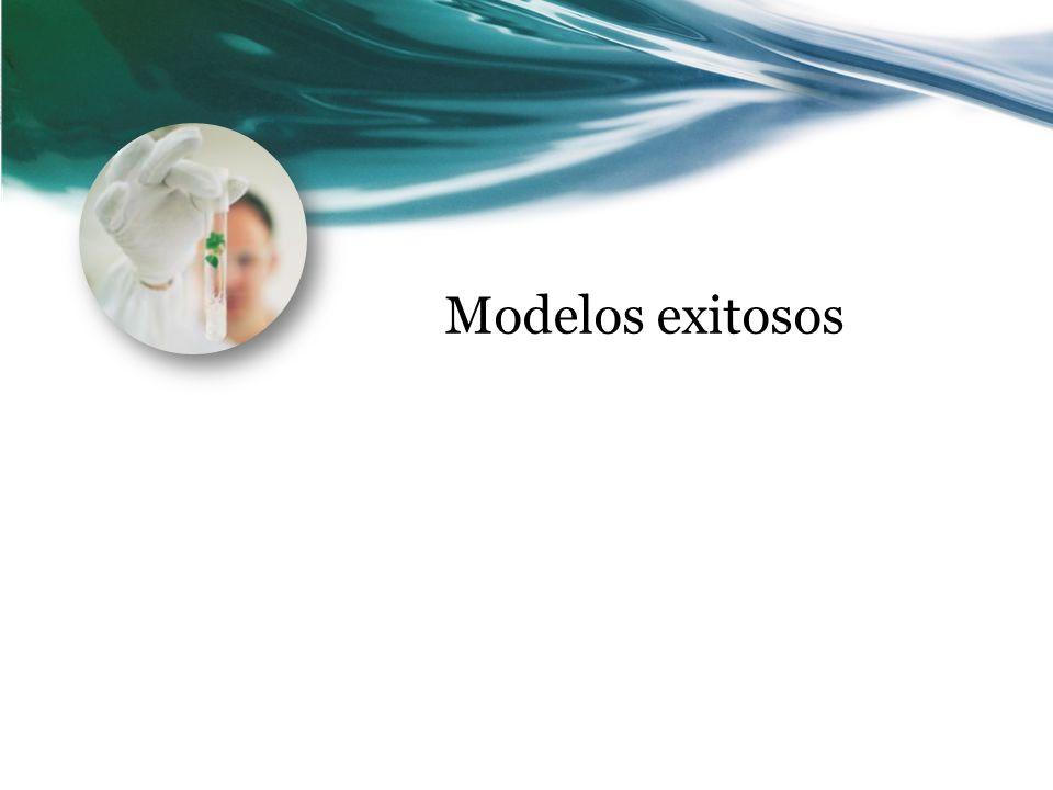 Modelos exitosos