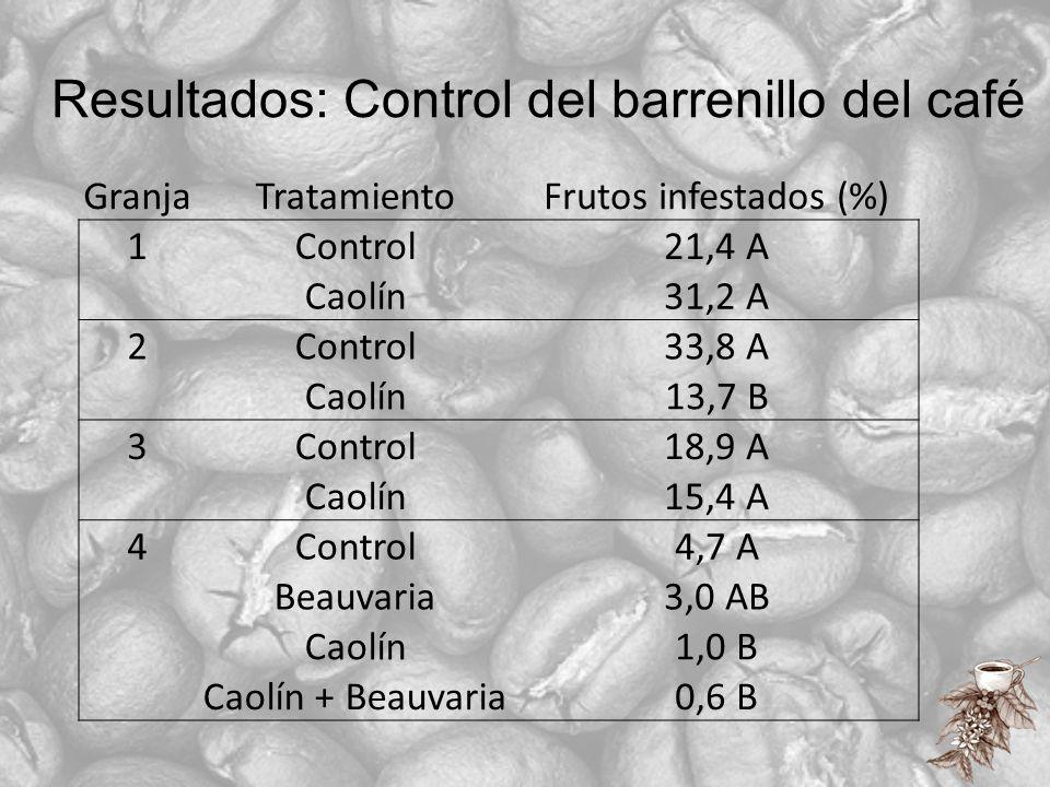 Resultados: Control del barrenillo del café