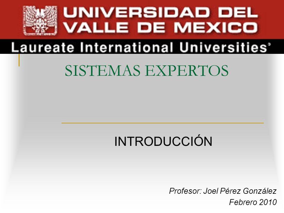 SISTEMAS EXPERTOS INTRODUCCIÓN Profesor: Joel Pérez González