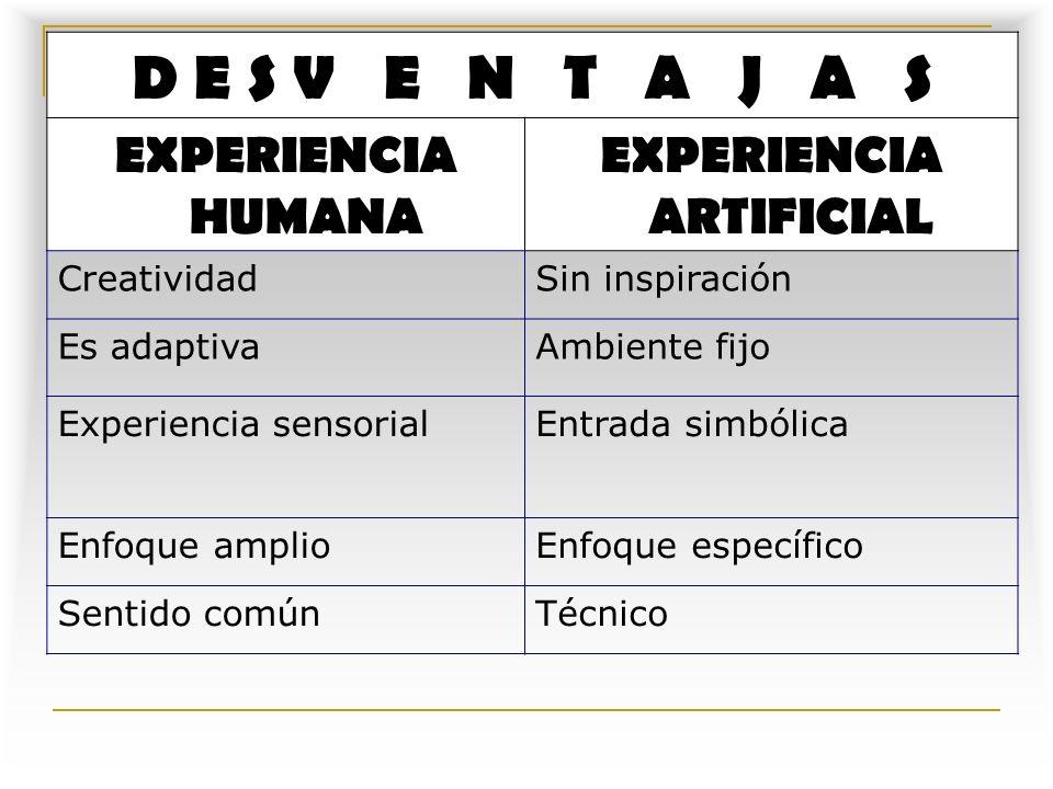 EXPERIENCIA ARTIFICIAL