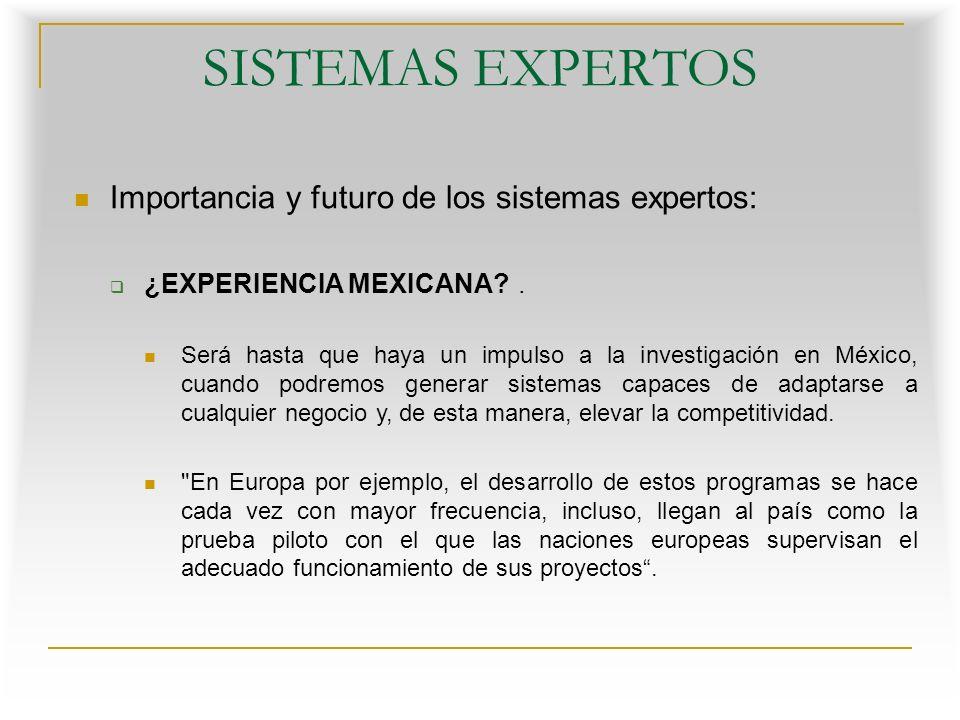 SISTEMAS EXPERTOS Importancia y futuro de los sistemas expertos: