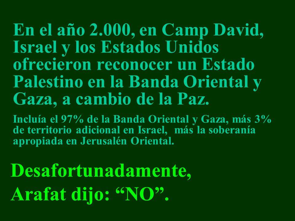 Desafortunadamente, Arafat dijo: NO .