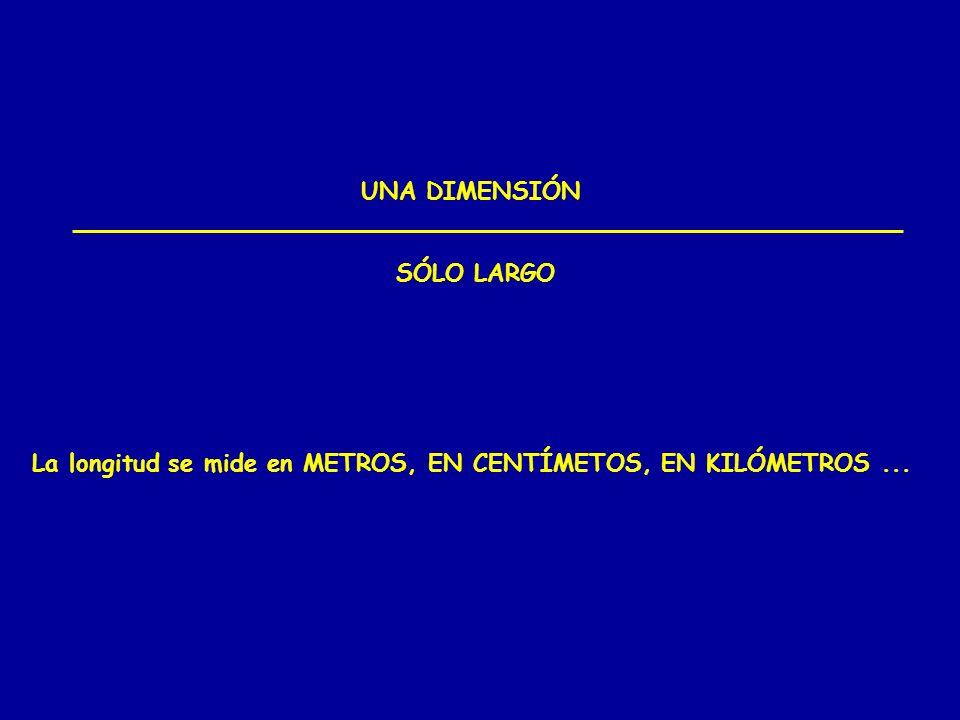 UNA DIMENSIÓN SÓLO LARGO La longitud se mide en METROS, EN CENTÍMETOS, EN KILÓMETROS ...