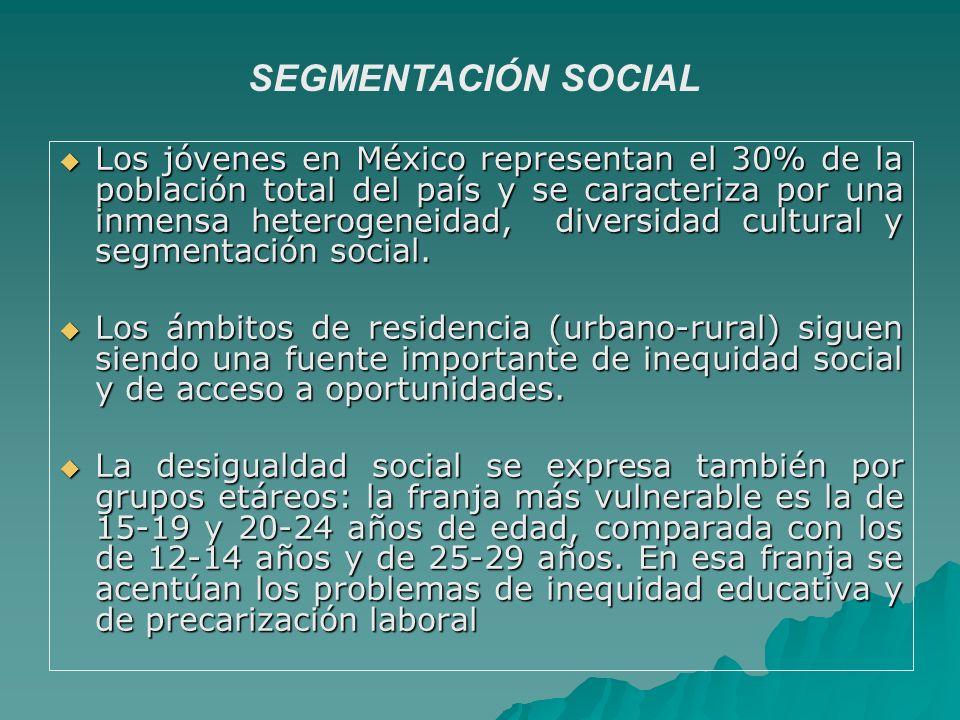 SEGMENTACIÓN SOCIAL