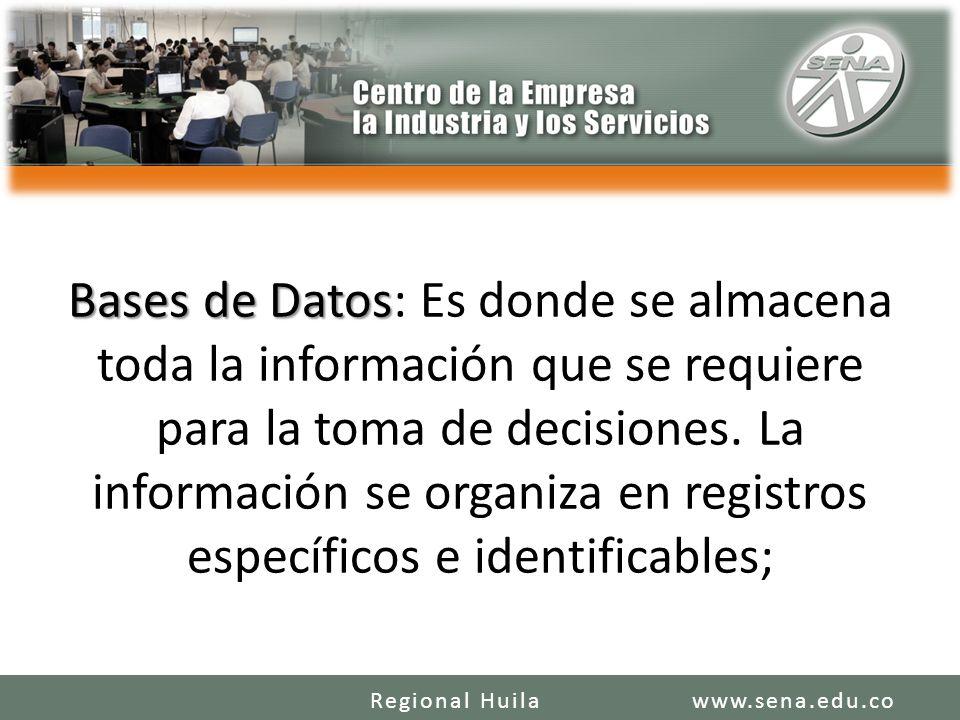 Bases de Datos: Es donde se almacena toda la información que se requiere para la toma de decisiones. La información se organiza en registros específicos e identificables;