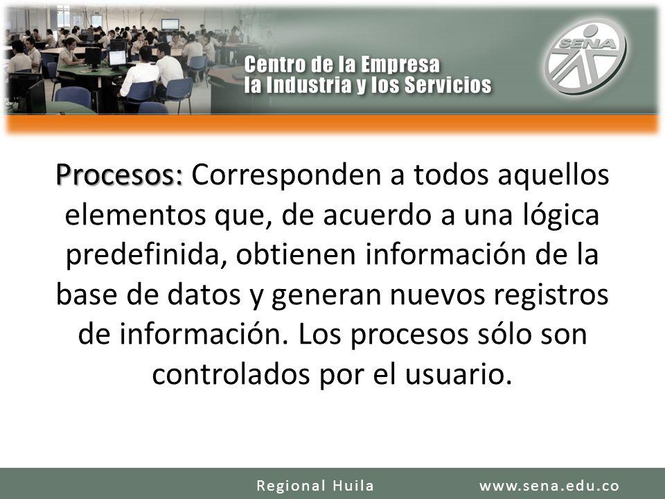 Procesos: Corresponden a todos aquellos elementos que, de acuerdo a una lógica predefinida, obtienen información de la base de datos y generan nuevos registros de información. Los procesos sólo son controlados por el usuario.