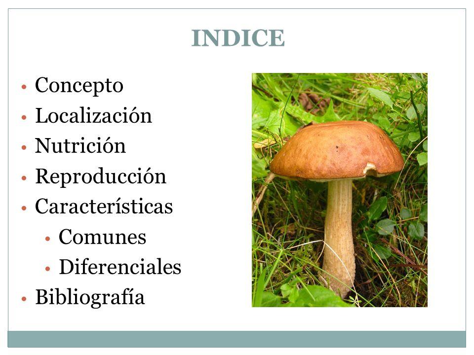 INDICE Concepto Localización Nutrición Reproducción Características