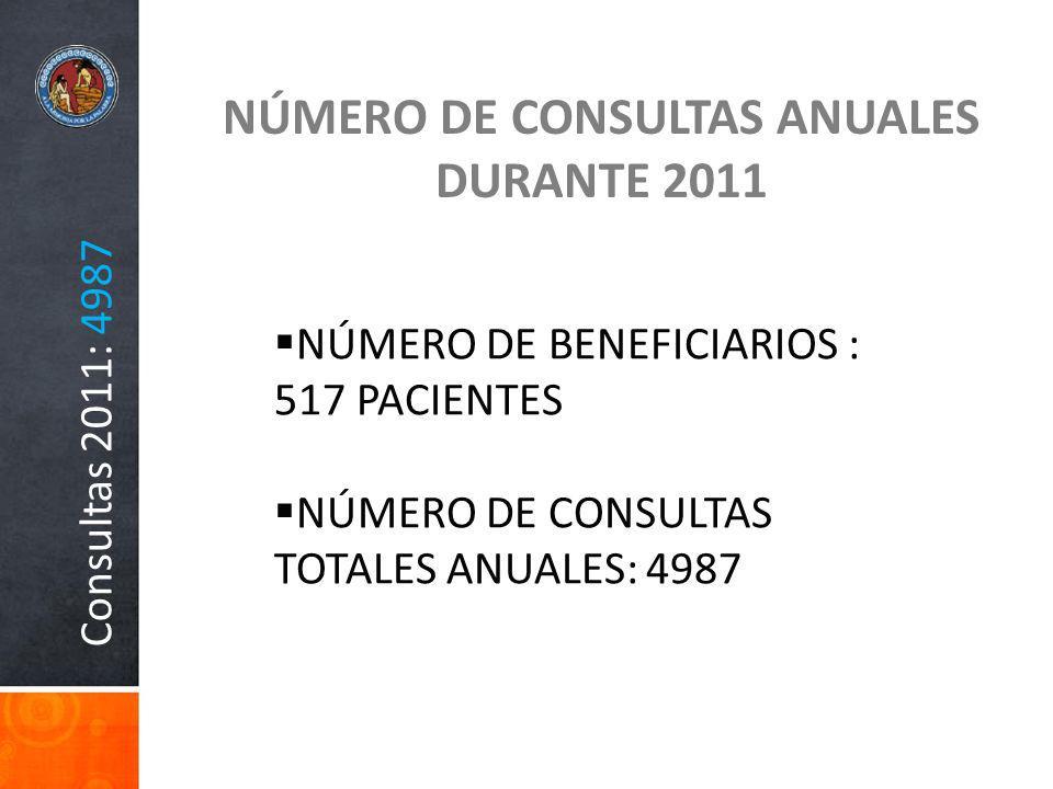 NÚMERO DE CONSULTAS ANUALES DURANTE 2011