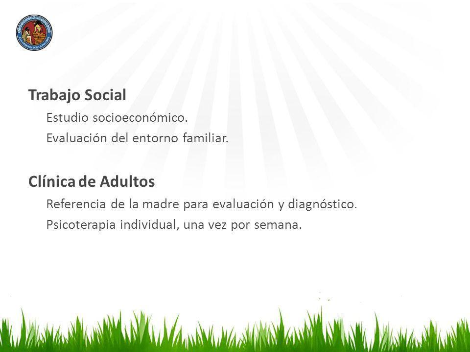 Trabajo Social Clínica de Adultos Estudio socioeconómico.