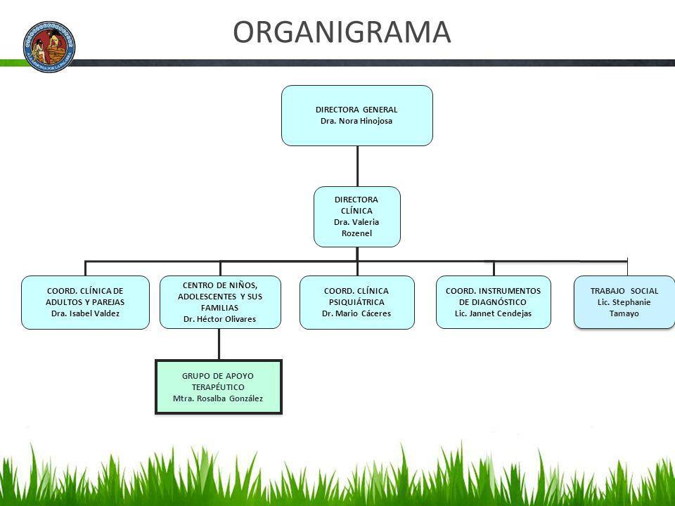 ORGANIGRAMA DIRECTORA GENERAL Dra. Nora Hinojosa DIRECTORA CLÍNICA