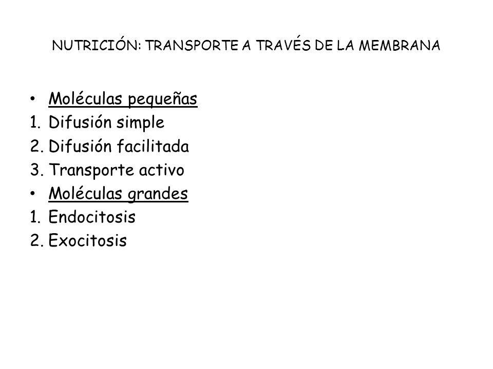 NUTRICIÓN: TRANSPORTE A TRAVÉS DE LA MEMBRANA
