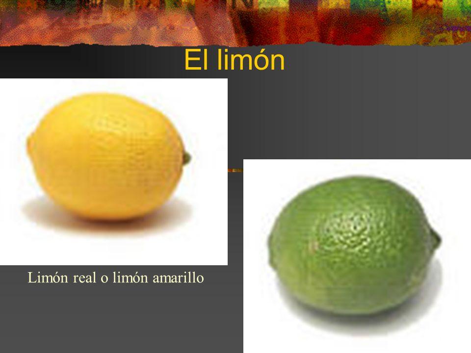 El limón Limón real o limón amarillo