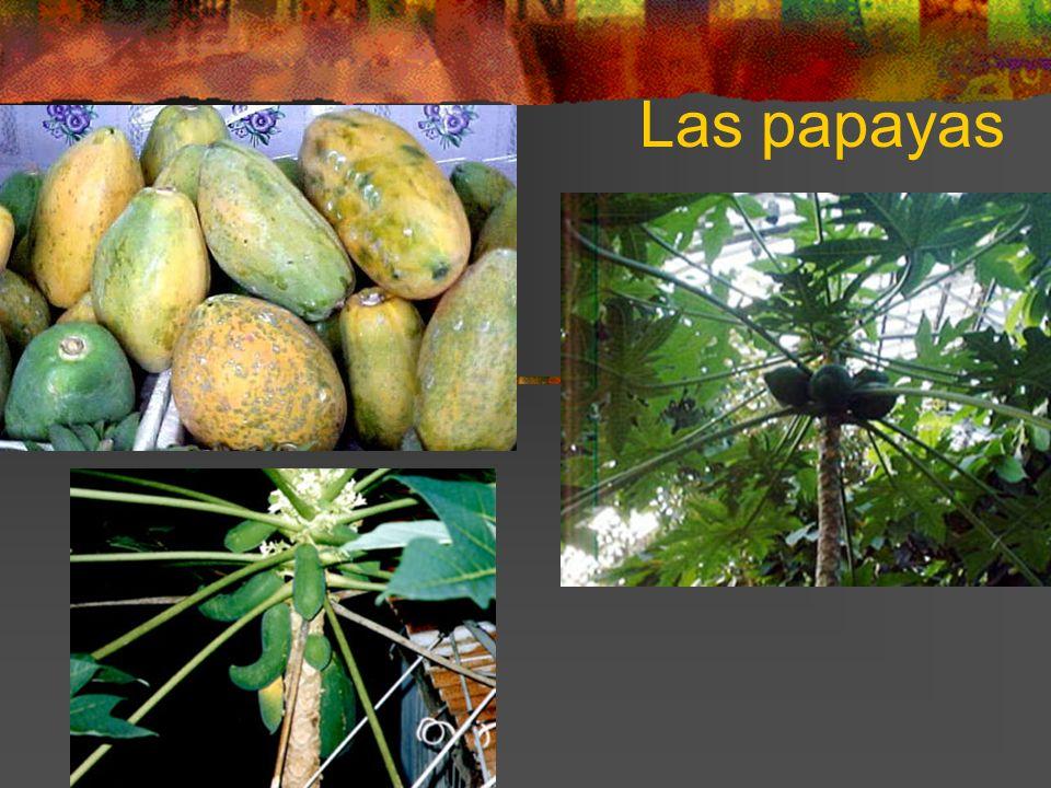 Las papayas