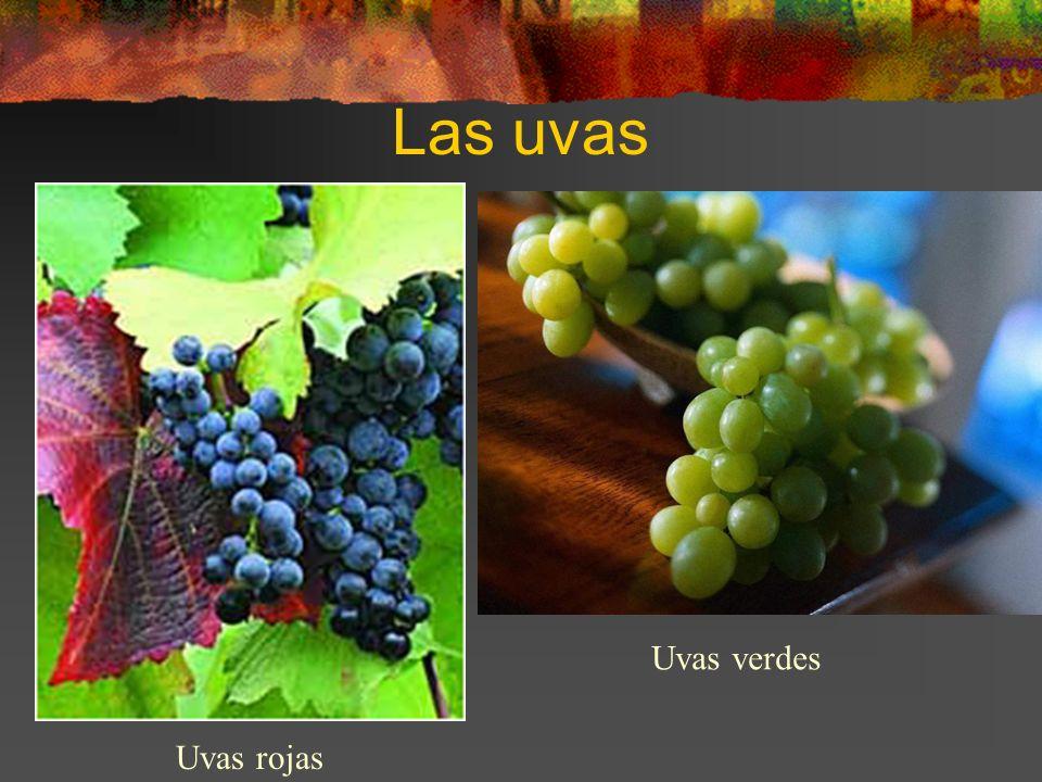 Las uvas Uvas verdes Uvas rojas