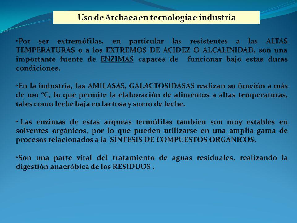 Uso de Archaea en tecnología e industria