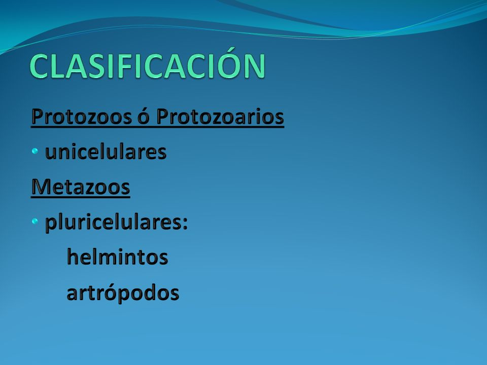 CLASIFICACIÓN Protozoos ó Protozoarios unicelulares Metazoos