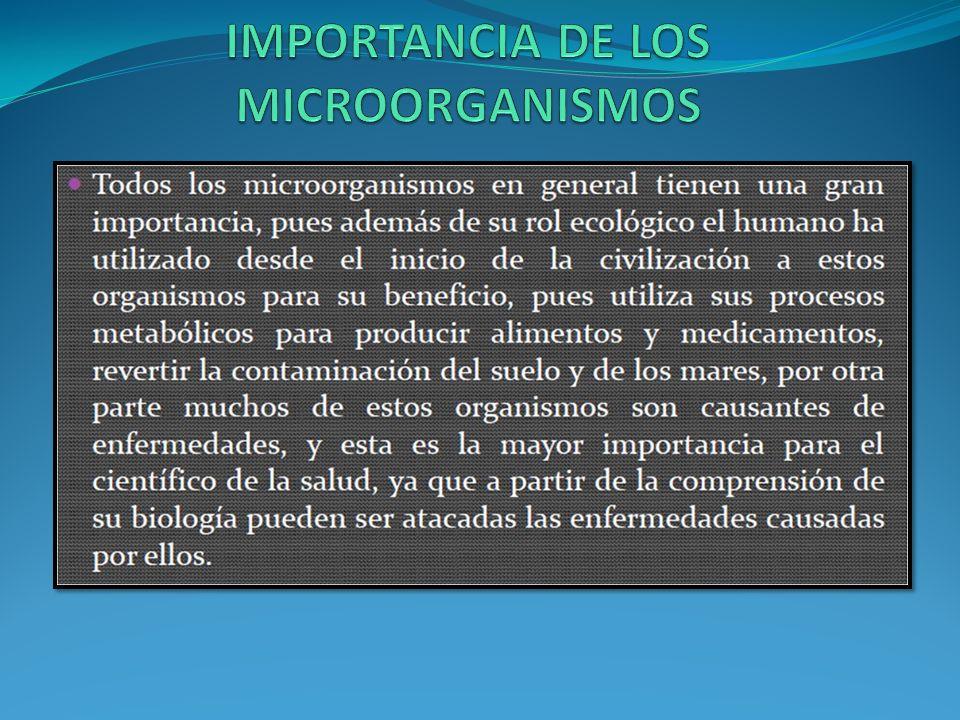 IMPORTANCIA DE LOS MICROORGANISMOS