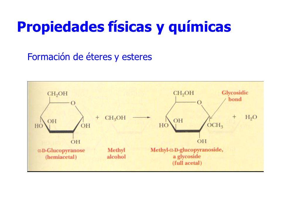 Propiedades físicas y químicas