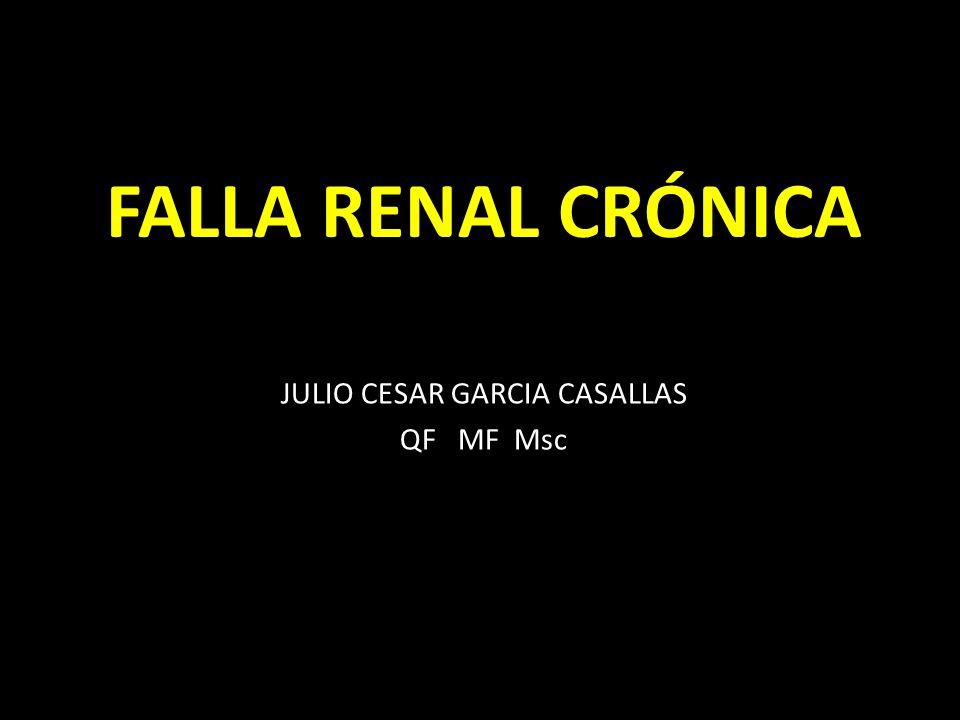 JULIO CESAR GARCIA CASALLAS