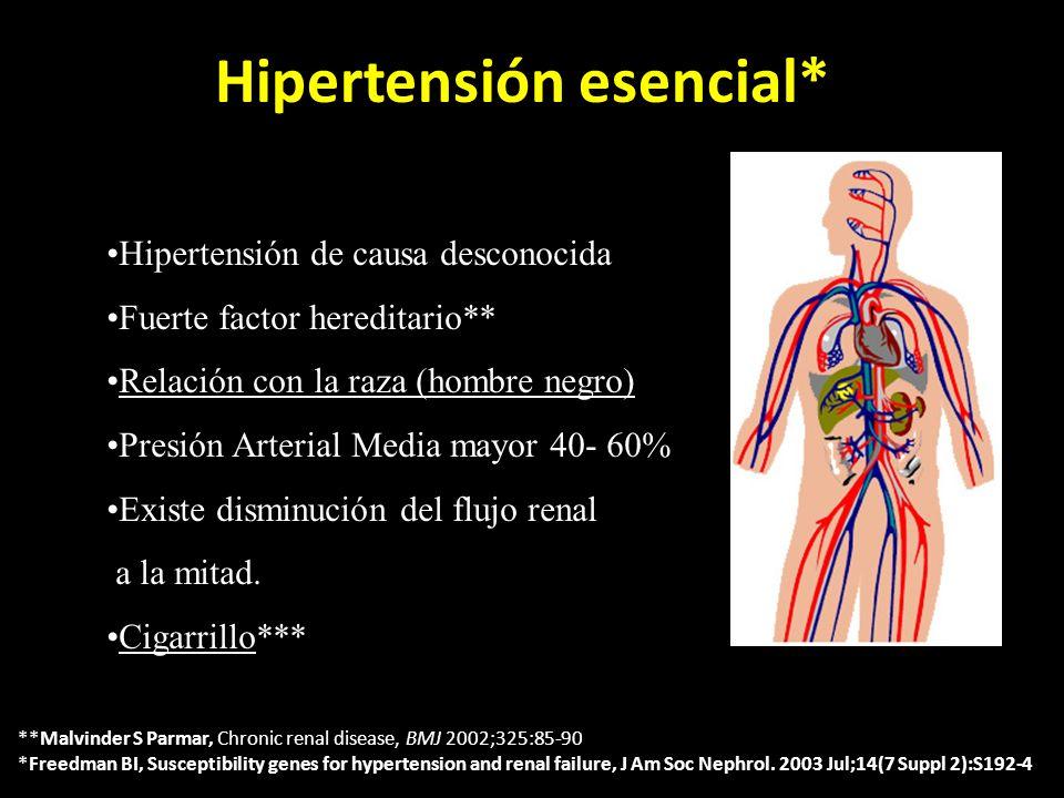 Hipertensión esencial*