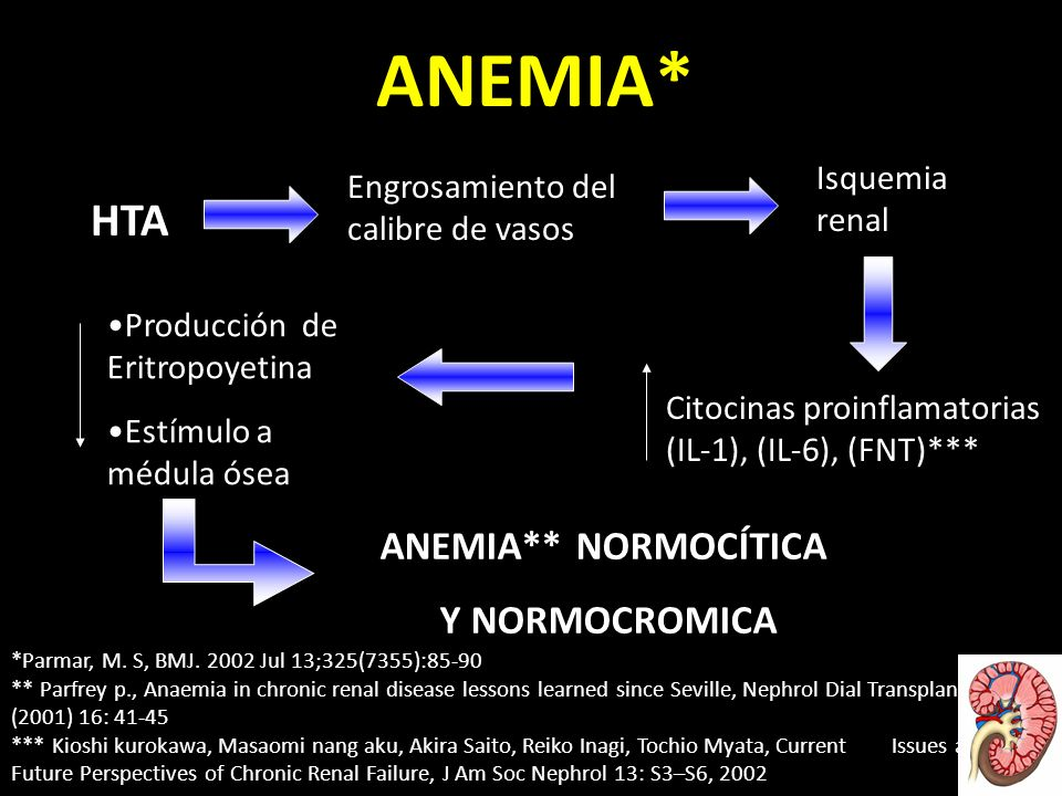 ANEMIA* HTA ANEMIA** NORMOCÍTICA Y NORMOCROMICA Isquemia renal