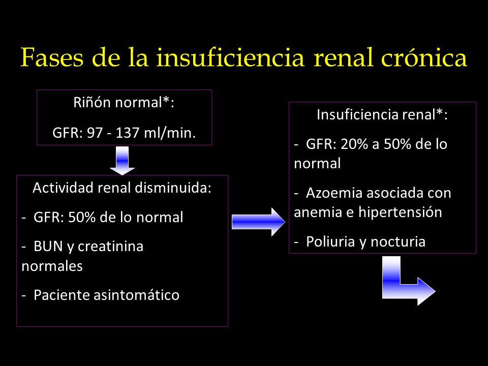 Fases de la insuficiencia renal crónica