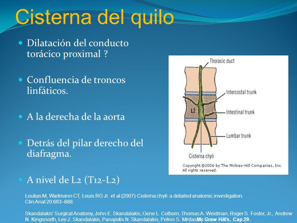 Cisterna del quilo Dilatación del conducto torácico proximal