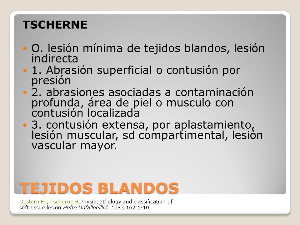 TEJIDOS BLANDOS TSCHERNE
