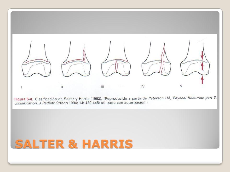 SALTER & HARRIS