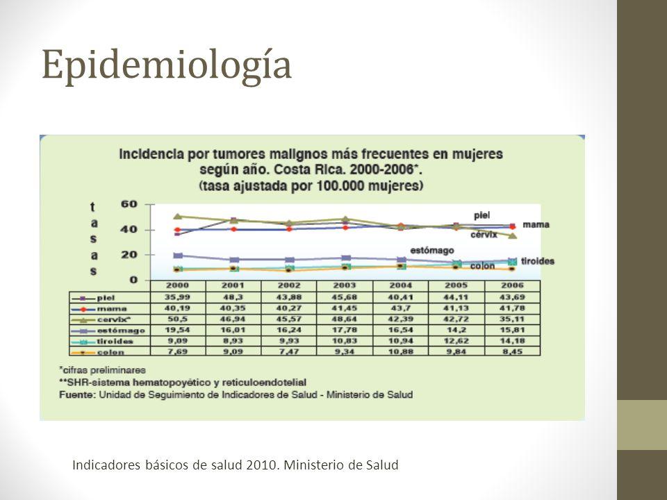 Epidemiología Indicadores básicos de salud 2010. Ministerio de Salud