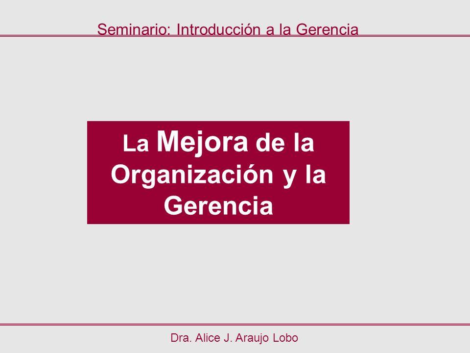 La Mejora de la Organización y la Gerencia