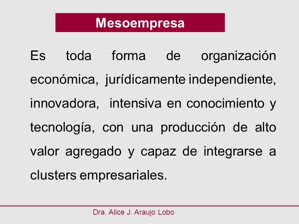 Es toda forma de organización económica, jurídicamente independiente,