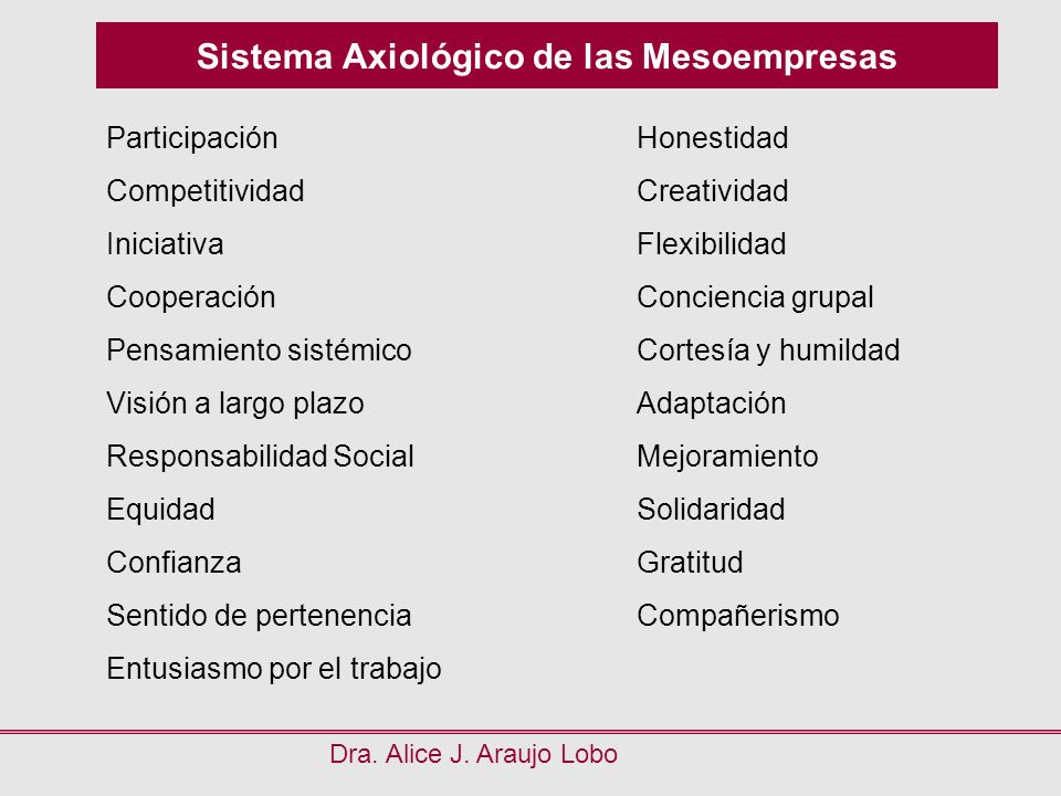 Sistema Axiológico de las Mesoempresas