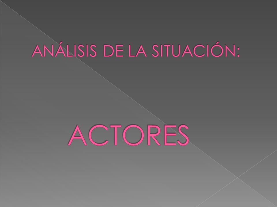 ANÁLISIS DE LA SITUACIÓN: ACTORES