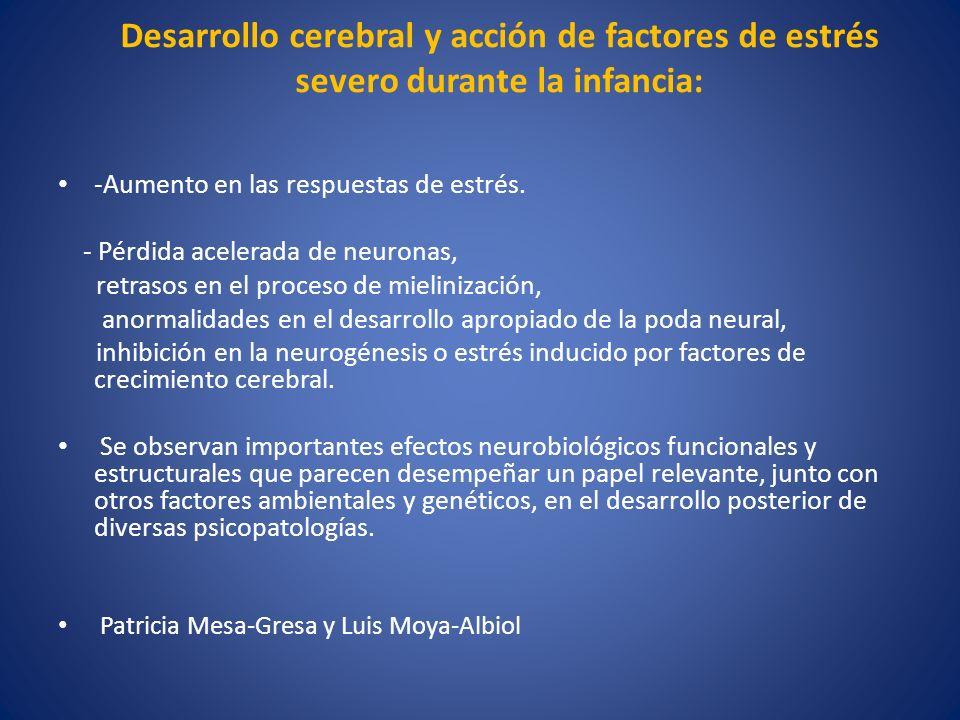 Desarrollo cerebral y acción de factores de estrés severo durante la infancia: