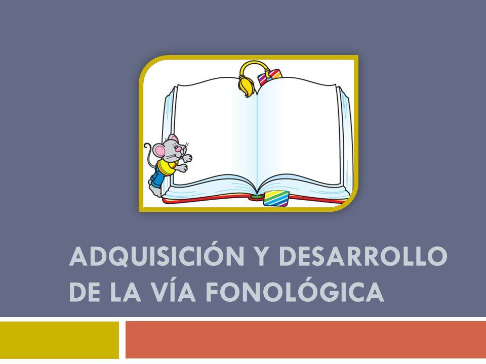 Adquisición y desarrollo de la vía fonológica