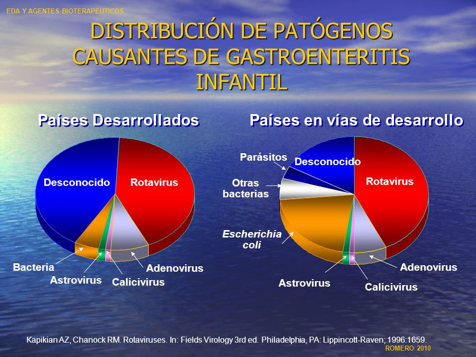 DISTRIBUCIÓN DE PATÓGENOS CAUSANTES DE GASTROENTERITIS INFANTIL