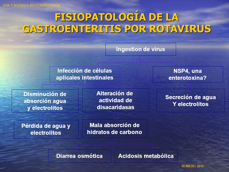 FISIOPATOLOGÍA DE LA GASTROENTERITIS POR ROTAVIRUS