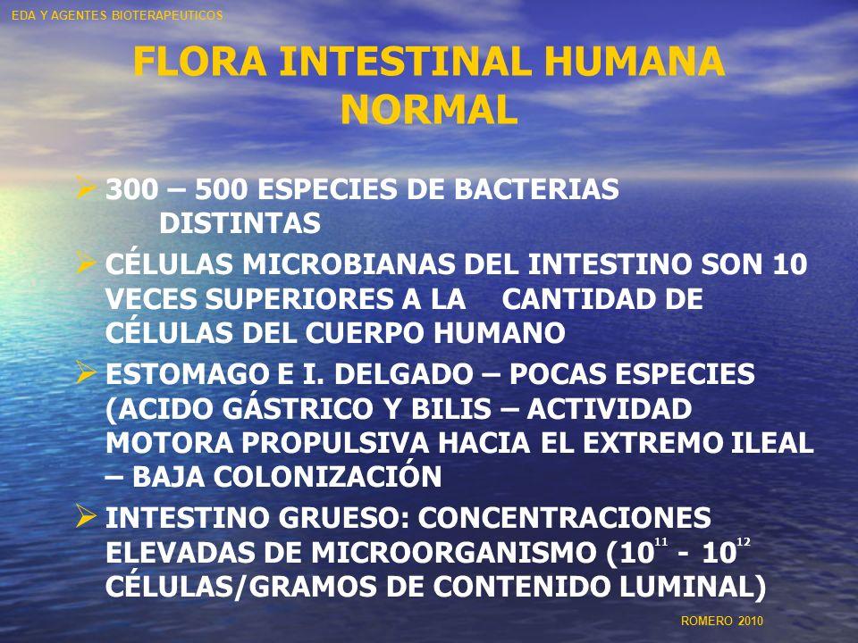 FLORA INTESTINAL HUMANA NORMAL